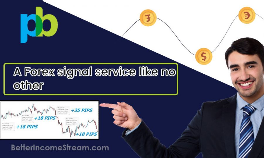 1000pip Builder A Forex Signal Service Like No Other