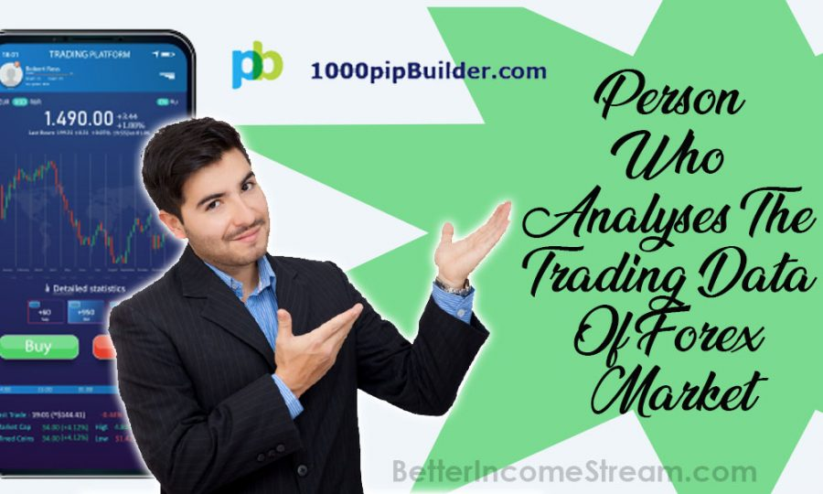 1000pip Builder Person Who Analyses The Trading Data Of Forex Market
