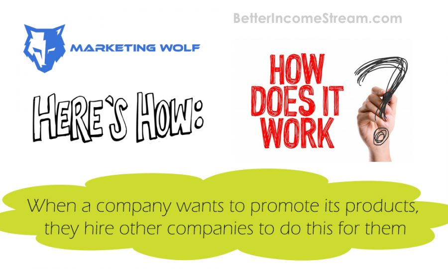 Affiliate Marketing Wolf How Does It Work
