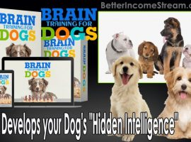 Brain Training for Dogs Develops your Dog's Hidden Intelligence