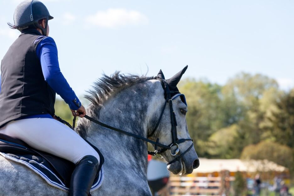 Horse jokey