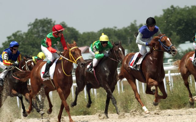 Bet Alchemist Review: Find Your Perfect Horse Betting Formula