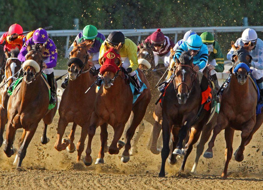 Jockeys storm down the homestretch