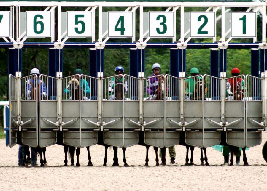 Start gates for horse races.Caucasus