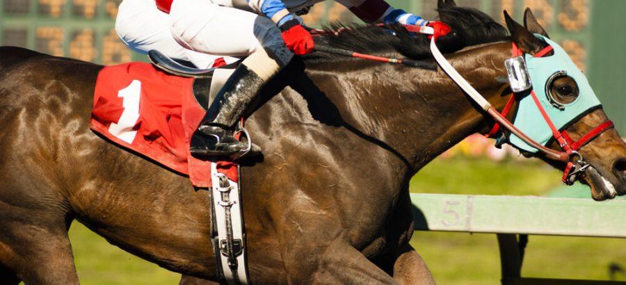 Two Horses and Jockeys