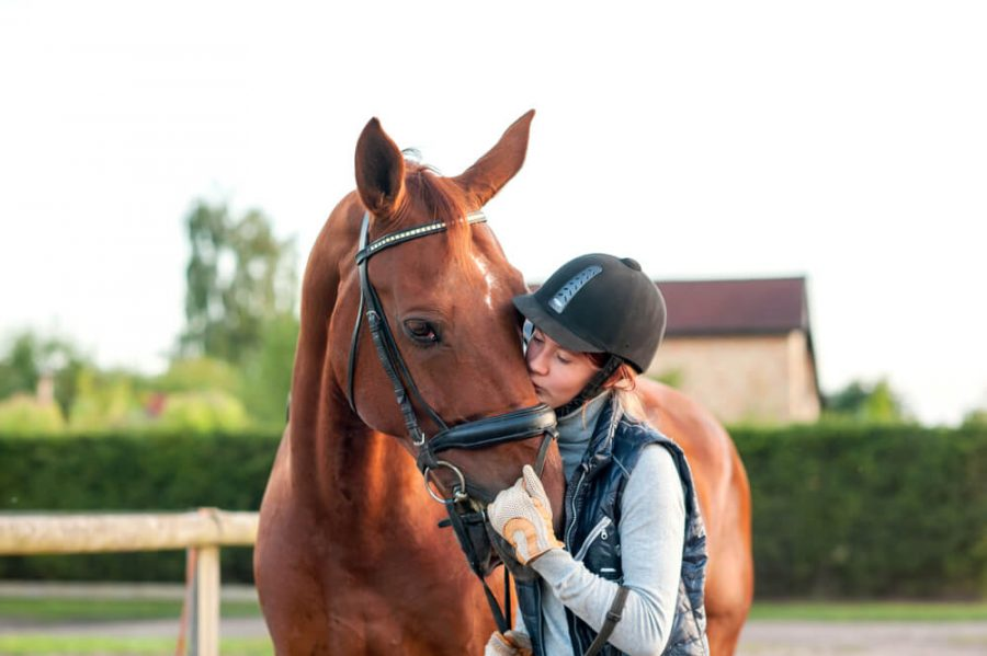 Young teenage girl equestrian kissing her chestnut horse