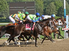 field for the Coaching Club American Oaks