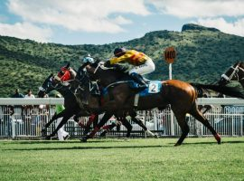 Horse racing competition