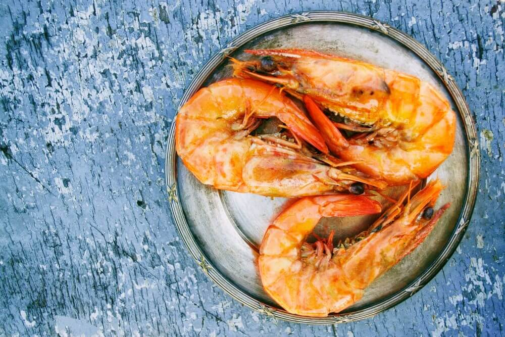 Shrimp Farming Guide