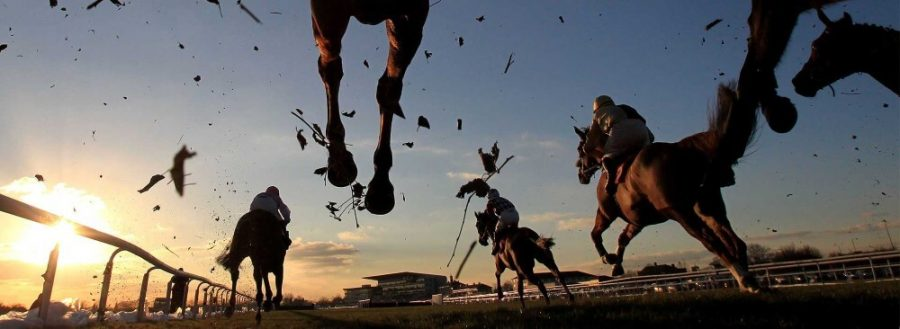 horse racing at sunset