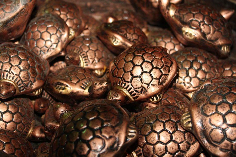 tortoise-166432_1920